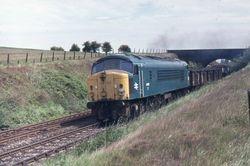 44010 working a coal train