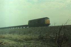 Class 31 heading northbound with steel empties