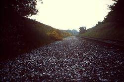 Brownhills trackbed