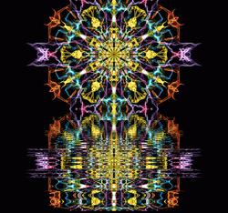 Flower of Dreams