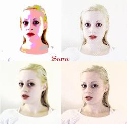 Sara's Flashy Poster