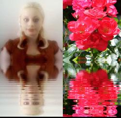Sara's Rose Ripples