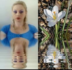 Sara's Pristine Flower