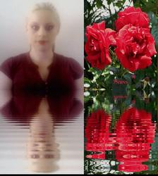 Sara's Rose Glow
