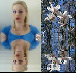 Sara's Magnolia