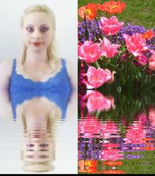 Sara's Lovely Tulips