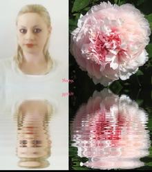 Sara's¨Pale Petals