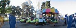 Turtle Parade