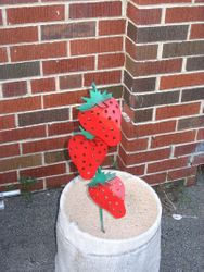 Strawberry Stake