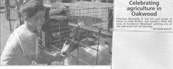 Farm Boy feeds goat
