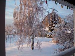 it is even pretty in the winter