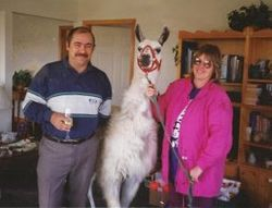 John, Linda and Lucky the Llama