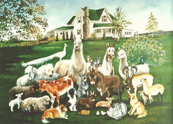 Painting of our Farm and animals
