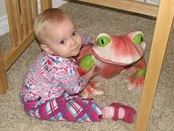 How many frogs must I kiss to find my prince?