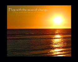 Flow with the Seas of Change