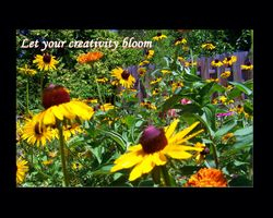 Let Your Creativity Bloom