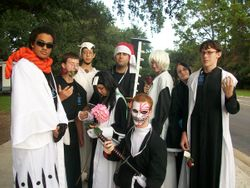 Group Bleach (V)