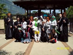 Group Bleach Pic