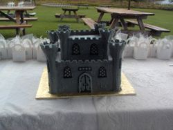 Groom's Castle Cake