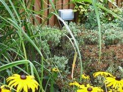 Garden sockets