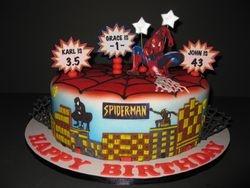 Spiderman Birthday Celebration