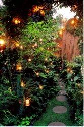 Candlelit Pond