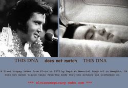DNA does not match.
