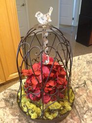 Large Size Bird Cages