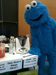 Even Cookie Monster got in the act