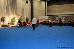 Jyvaskyla show - dachies on the road :)