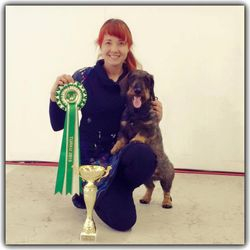 LAHTI 2015 BEST IN GROUP 4 Tiny Trotter's Excalibur