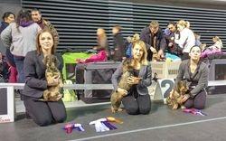 Happy handlers :)