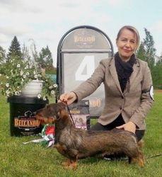 BIG4 Riihimaki all breeds show 7.6.2015 judge Anne Sume (EE) LTJW-15 EE JUN CH LT JUN CH Zsazsa Gabor della Val Vezzeno