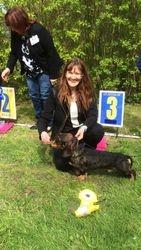BIS3 Tiny Trotter's Bartlolommeo Gotland dog show judge Elisabeth Rhodin (SE)