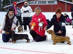 Pietarsaari 6.5.2012 JW-10 HeJW-10 HeW-10 Tiny Trotter's Joburg BOB