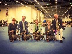 BEST BREEDER HELSINKI WINNER 2015 judge Kis Tibor (HU)