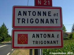 Antona e Trigonant