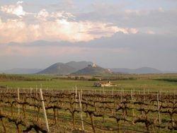 Vistas a Nogales
