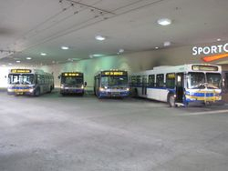 Buses @ Metrotown Station