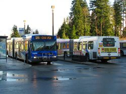 1999 New Flyer D60LF's 8026 and 8045