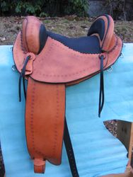 trail saddle, padded cantle, fenders forward