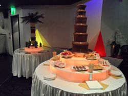 Celebrity Fruit Palm Tree Hire Manchester