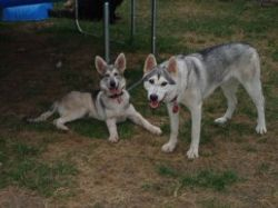 Saskia with Kas