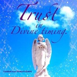 Trust Devine