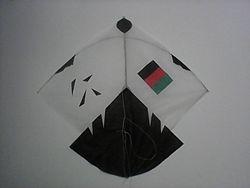 Afghan Kite