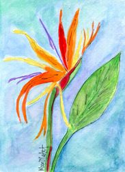 Bird of Paradise Two
