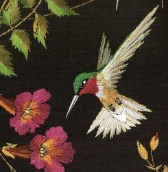 Riby throated hummingbird