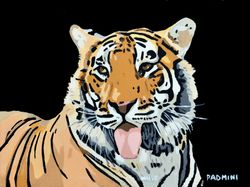 PADMINI - 'Bengal Queen'