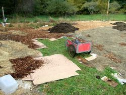 Sheet Mulching and manure