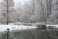 Brookside Pond, Late March Snow
